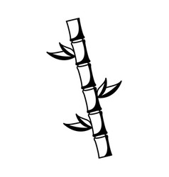 Bamboo plant isolated icon vector
