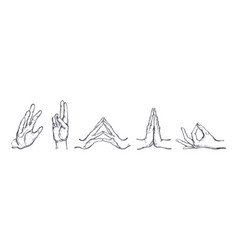 different gestures of human hands isolated on a vector image