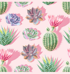 High detail succulent and cactus seamless pattern vector