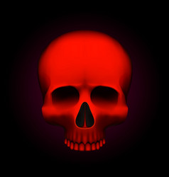 human skull isolated on black color red object vector image