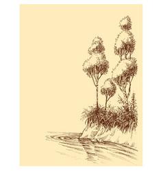 lake or river shore artistic sketch natural vector image