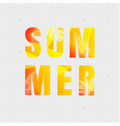 summer text isolated transparent background vector image