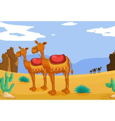 camels in desert vector image vector image