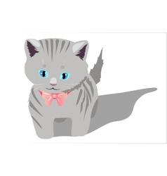 Little kitten on white background vector image