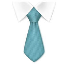 Tie isolated on white background vector image