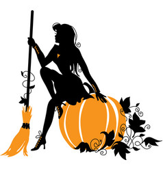 beautiful witch with broom and pumpkin vector image