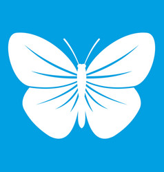 Black butterfly icon white vector