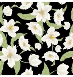 Christmas rose hellebore flowers pattern on black vector image