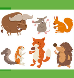 funny cartoon wild animal characters collection vector image