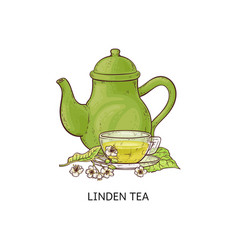Linden flowers with a teapot and cup tea sketch vector