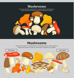 Mushrooms all species on internet promotional vector