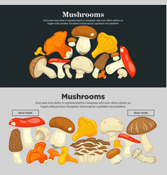 Mushrooms of all species on internet promotional vector