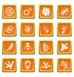 Virus bacteria icons set orange square vector