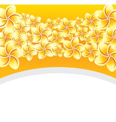 floral background with frangip vector image vector image