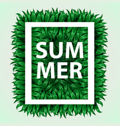 realistic grass frame eco concept fresh grass in vector image vector image