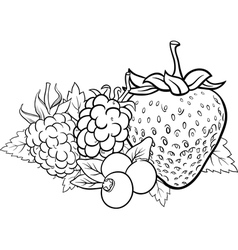 berry fruits for coloring book vector image
