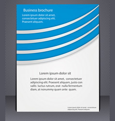 business brochure with elements lines vector image