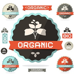 Organic Flat Design Retro Labels on White vector image