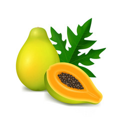 realistic 3d detailed papaya with half vector image
