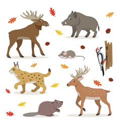 set forest wild animals isolated on white vector image