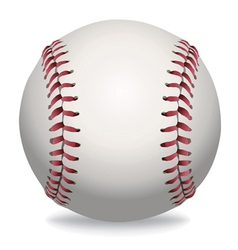 Baseball Isolated vector image vector image