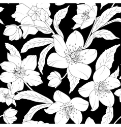 Hellebore floral foliage pattern white on black vector image