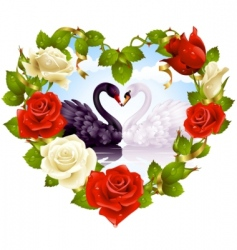 red roses and couple swans vector image vector image