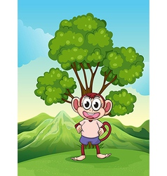 A cute playful monkey at the hilltop standing vector image vector image