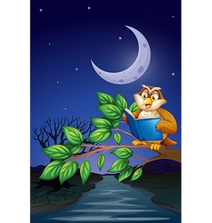 An owl reading above a branch a tree vector