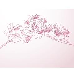 Blossoming tree line art vector