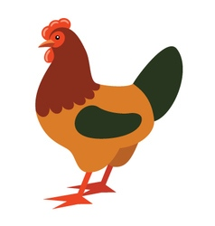 Cartoon rooster vector