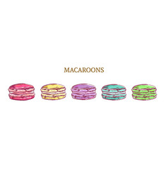Colorful sketch macaroon almond cakes vector
