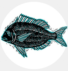 drawn freshwater fish silhouette natural graphic vector image