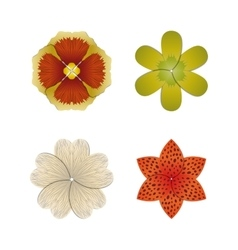 Flower bud set vector image