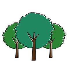 green three tree plant botanical natural vector image
