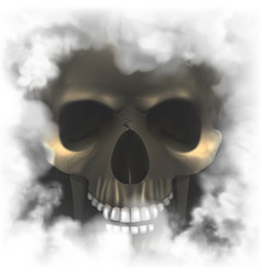 Realistic skull in a smoky frame vector