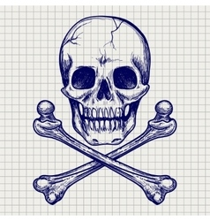 Skull and crossbones ball pen sketch vector image