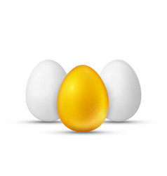 white and golden eggs realistic vector image