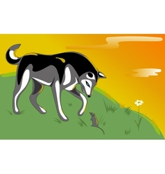 Husky and mouse vector image vector image