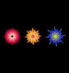abstract 3d psychedelic geometric flower set vector image