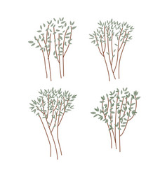 hand drawn young trees set green plants branches vector image