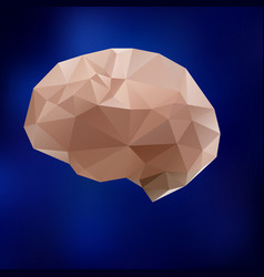 human brain triangle triangled brain vector image