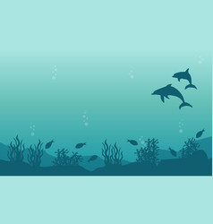 landscape of dolphin and fish silhouettes vector image