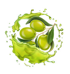 olive branch in realistic olive oil splash vector image