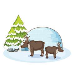 scene with reindeers in snow vector image