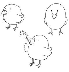 set of bird vector image