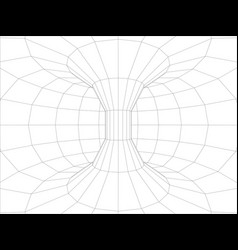 Wire-frame wall inside torus vector