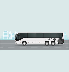 city bus on road passenger transport vector image vector image