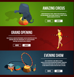 Invitation to the circus magic show three vector