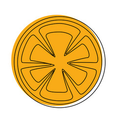 Orange slices icon vector